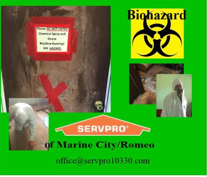 BIOHAZARD CLEANUP   CLAY TWP - ALGONAC